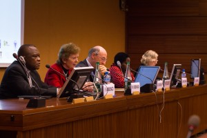 Panelists at the DRC: Breaking the Links between Natural Resources and Conflict