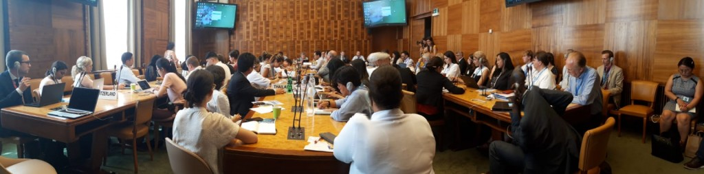 side event climate change 26.06.19 12